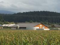 Agroekonomika, načrtovanje in gradnje