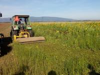 Ekološko kmetijstvo